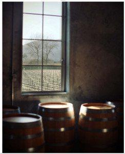 Fine Wine Barrels